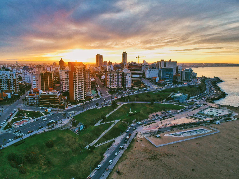 mel del plata na argentina