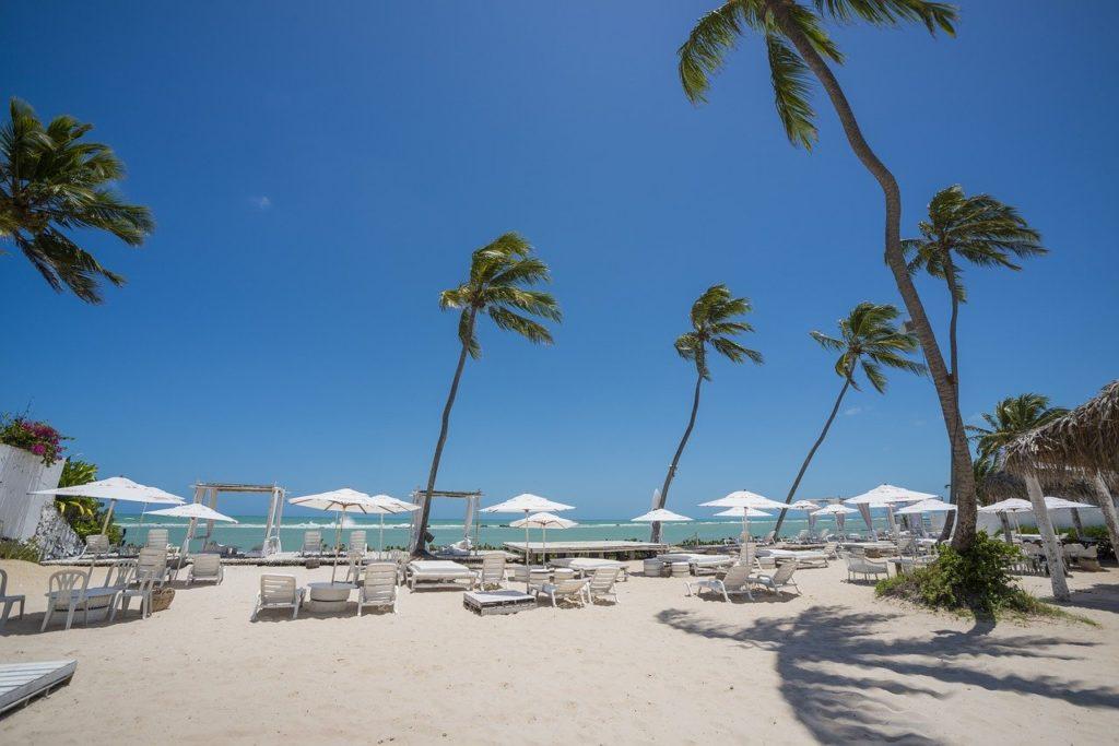 Praia em Maceió com coqueiros em dia de vento