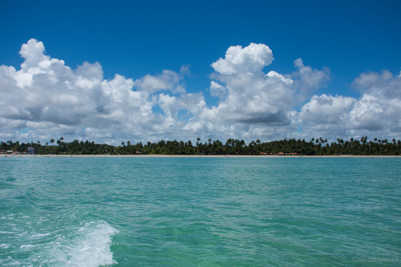 Mar turquesa em Maragogi, Alagoas