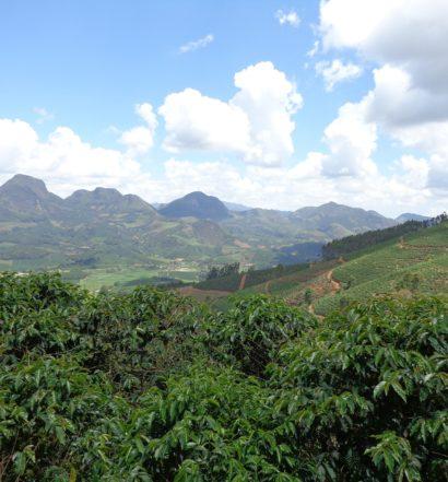 Montanhas e mata no estado de Minas Gerais