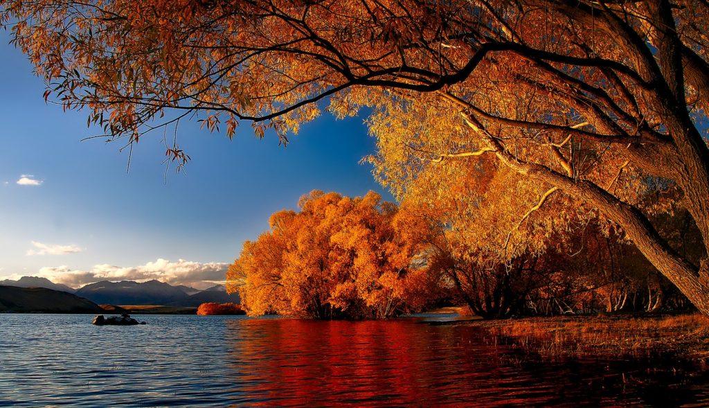 lago tekapo na nova zelândia