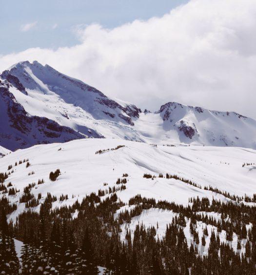 Montanha nevada em Whistler, no Canadá, e árvores coníferas na frente