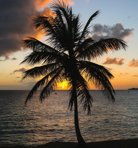 Baía de Freight em Barbados, no Caribe