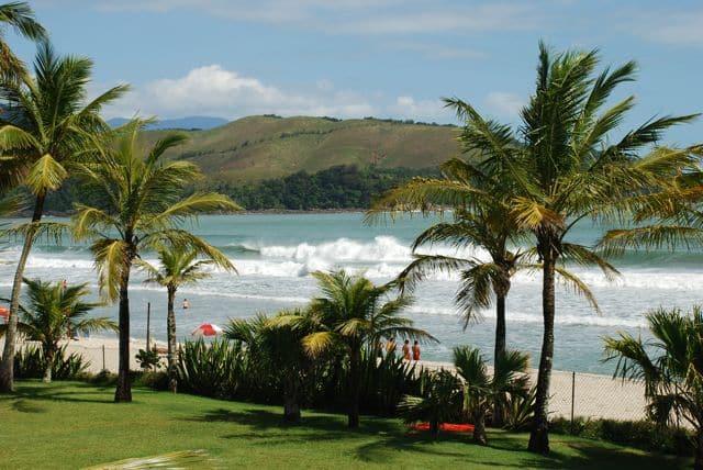 Coqueiros e grama antes da faixa de areia de Maresias, praia com ondas fortes