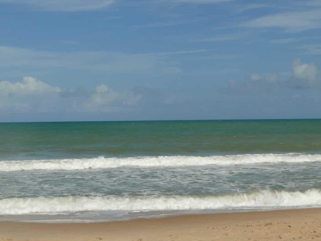 Mar esverdeado de Alagoas