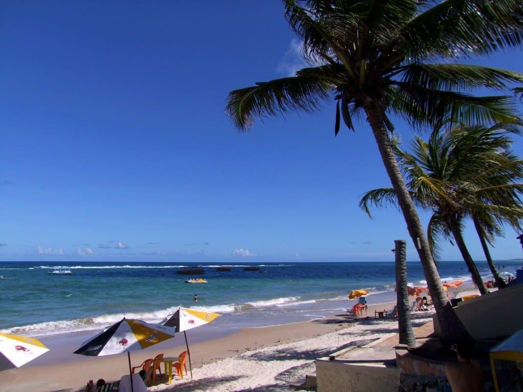 Coqueiro, mar turquesa e faixa de areia com mesas e cadeiras