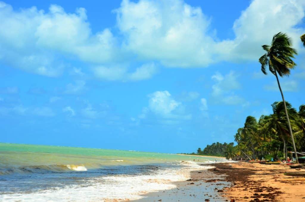 Orla de areia grossa em praia de águas esverdeadas no Alagoas