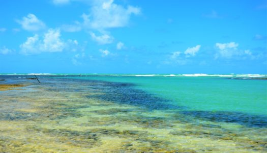Praia do Toque (Alagoas)