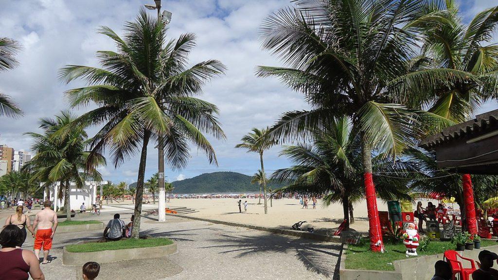 Coqueiros, calçada e início da faixa de areia da Praia Guilhermina