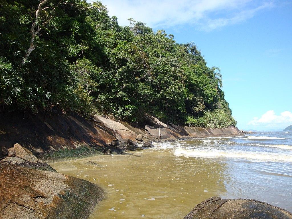 Trecho de mar com mata ao lado na Riviera de São Lourenço