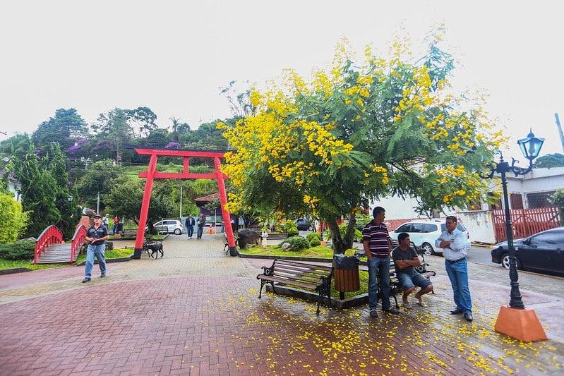 Praça do Artesão, em Santo Antônio do Pinhal, com monumento japonês, árvore florida e pessoas conversando e andando