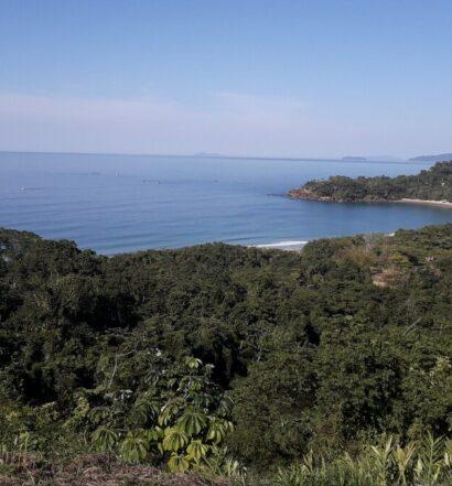 Vista da praia e da Mata Atlântica de um Airbnb em Prumirim