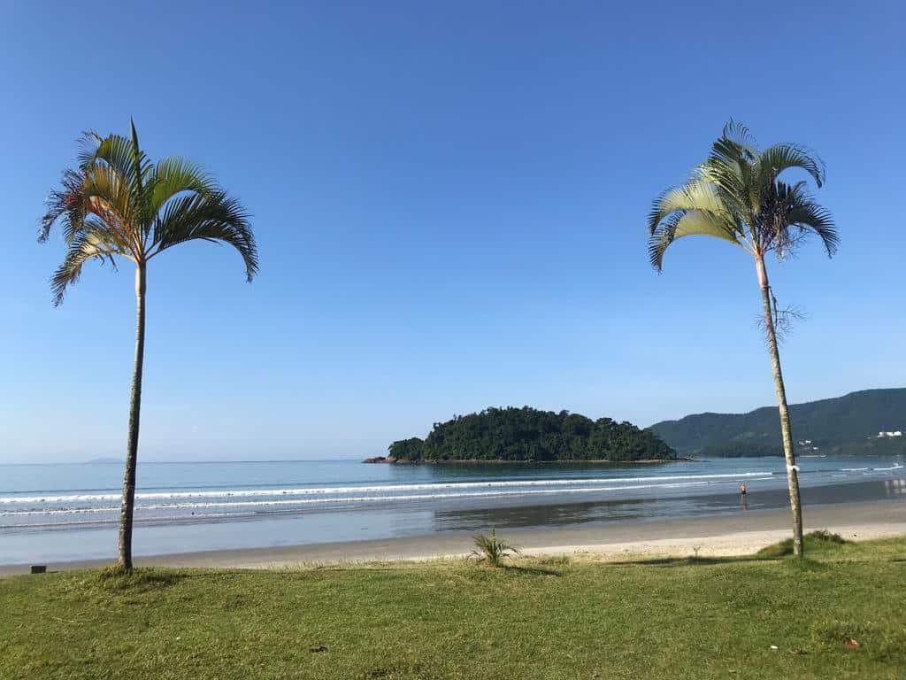 A Praia do Sapê, em Ubatuba, com dois coqueiros jovens e uma ilha em meio ao oceano