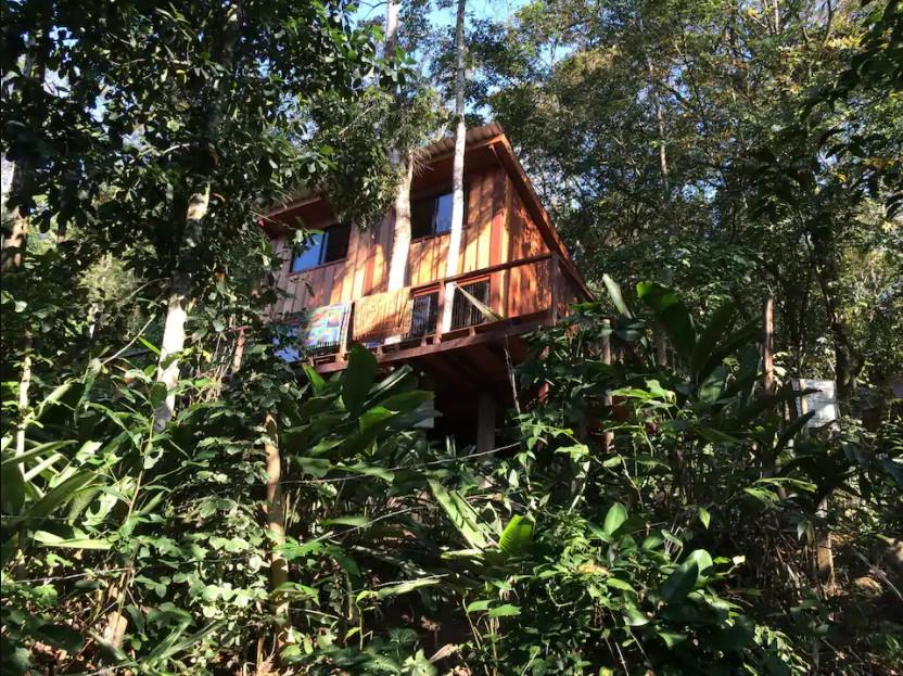 Casa na Floresta