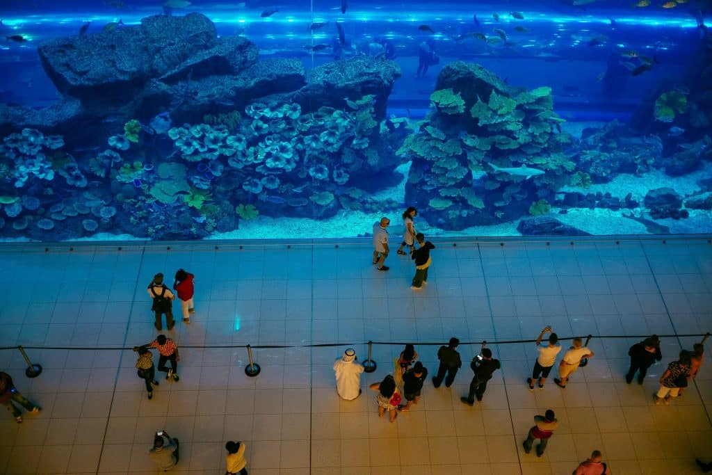 Foto do Dubai Aquarium, uma das opções de o que fazer em Dubai