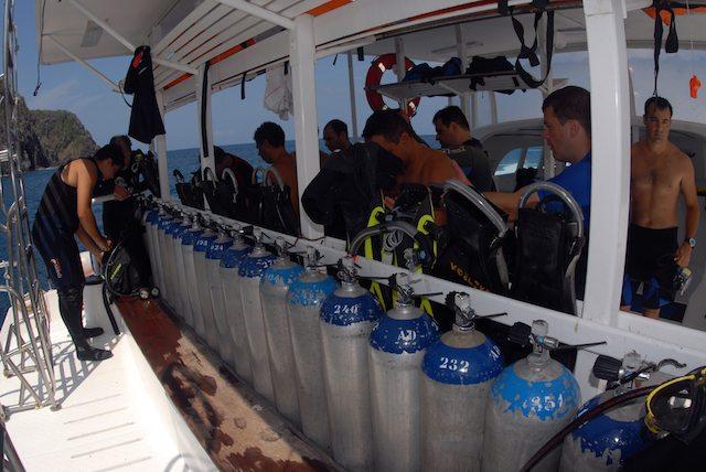 Mergulho com a equipe Atlantis Divers em fernando de noronha