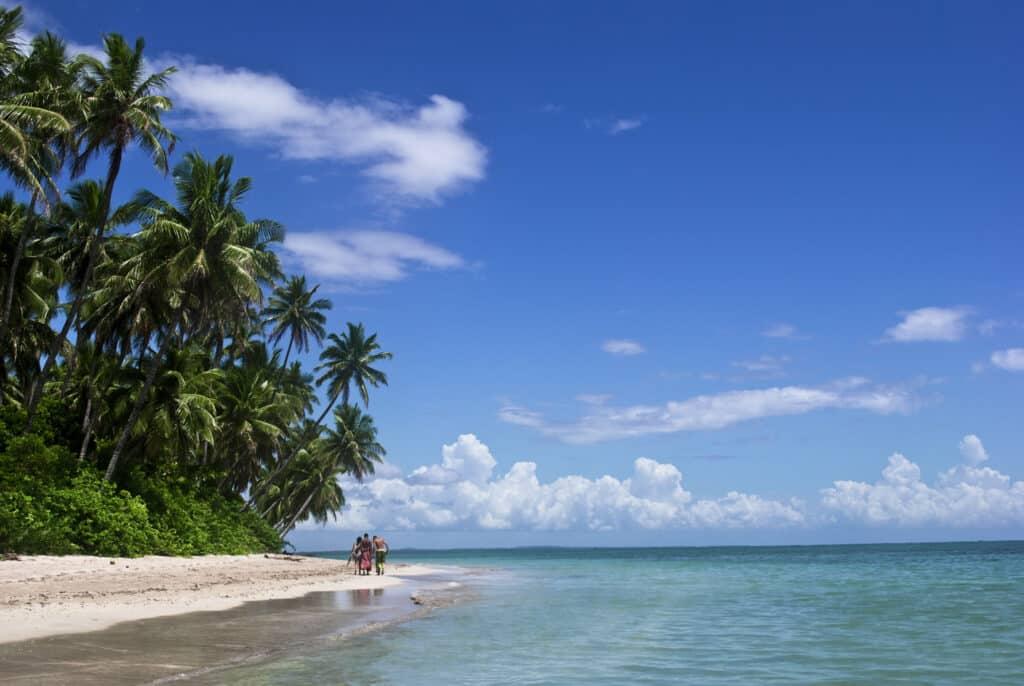 Praia em Moreré com vegetação densa ao lado da areia