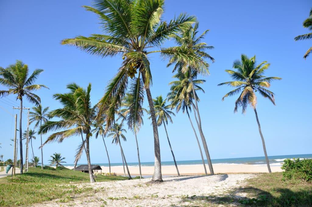 Uma das praias em Imbassaí, na Bahia