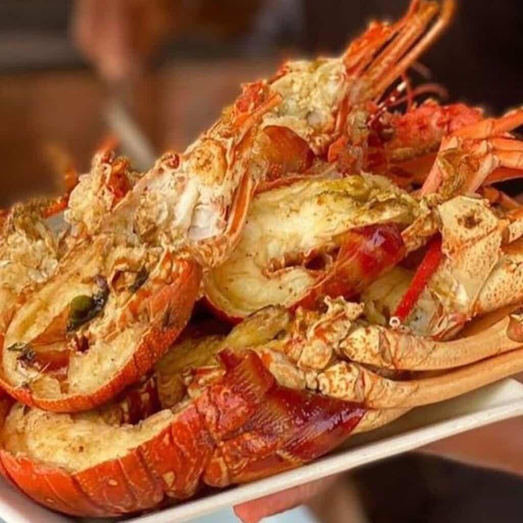 Lagosta do Restaurante do Guido, um lugar imperdível para conhecer durante a lua de mel na Bahia