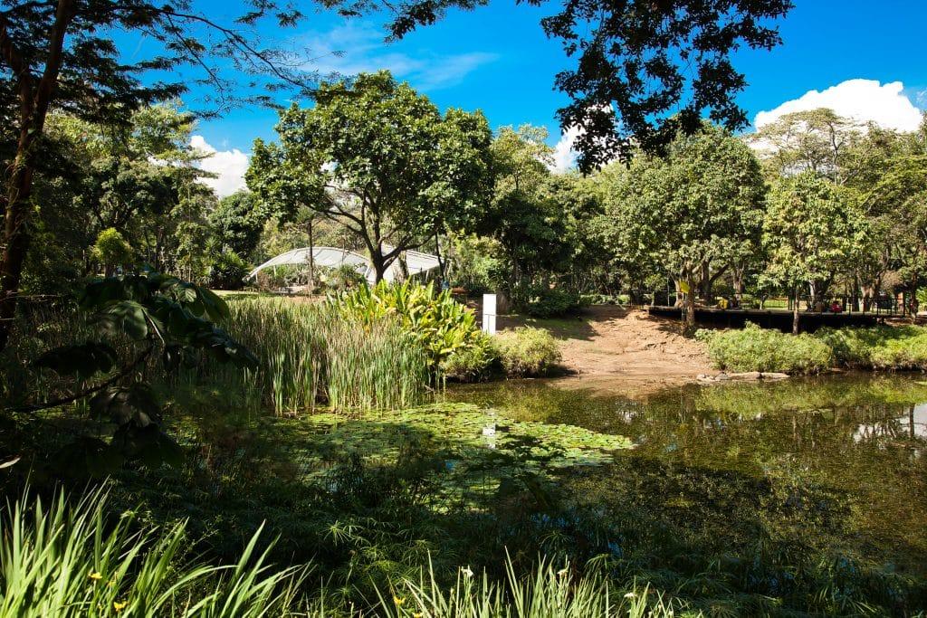 parque jardim botânico no roteiro em medellín
