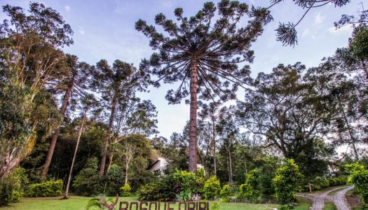 Pousadas no interior do Paraná – 11 lugares surpreendentes