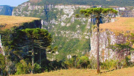 Hotéis fazenda na Serra Catarinense – Os 7 mais indicados