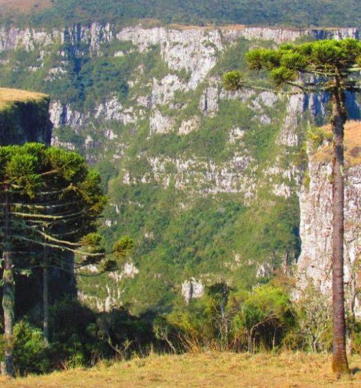 Vista da Serra Catarinense, de um dos hotéis fazenda da região